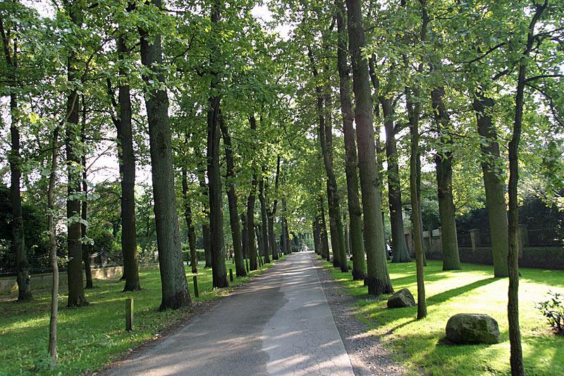 Ziele Förderkreis Stadtpark Gütersloh Thesings Allee