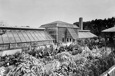 Palmenhaus Gütersloh