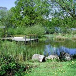 Teich am Naturnahen Garten