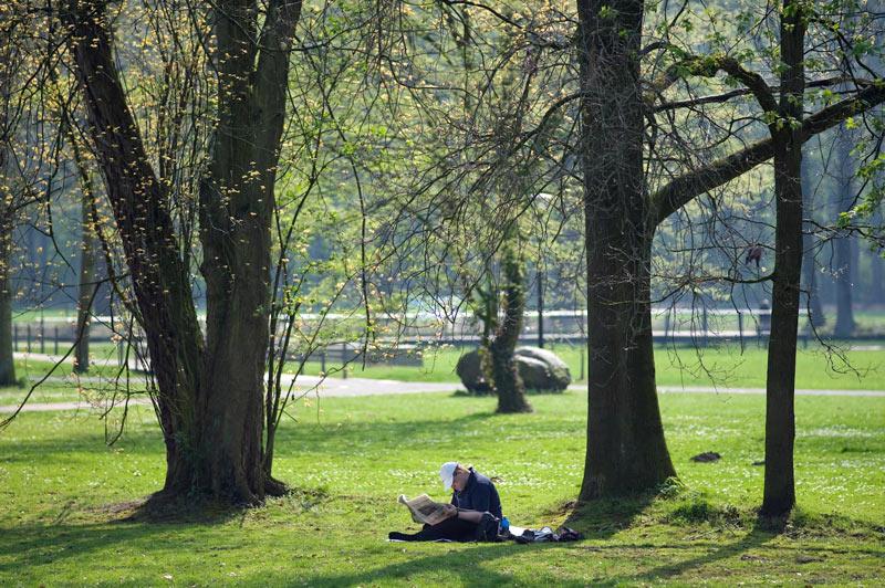 Findling im Baumgarten