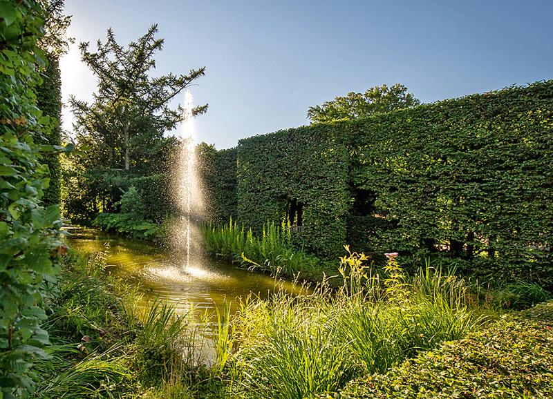 Heckengarten Botanischer Garten Gütersloh Sonnenlicht