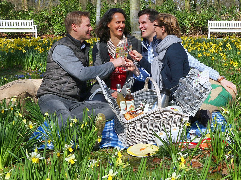 Picknick-im-Park