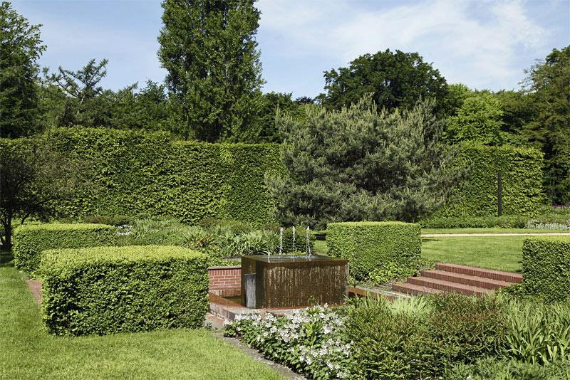 Gemeiner buchsbaum im botanischen garten apothekergarten g tersloh - Buchsbaum garten ...