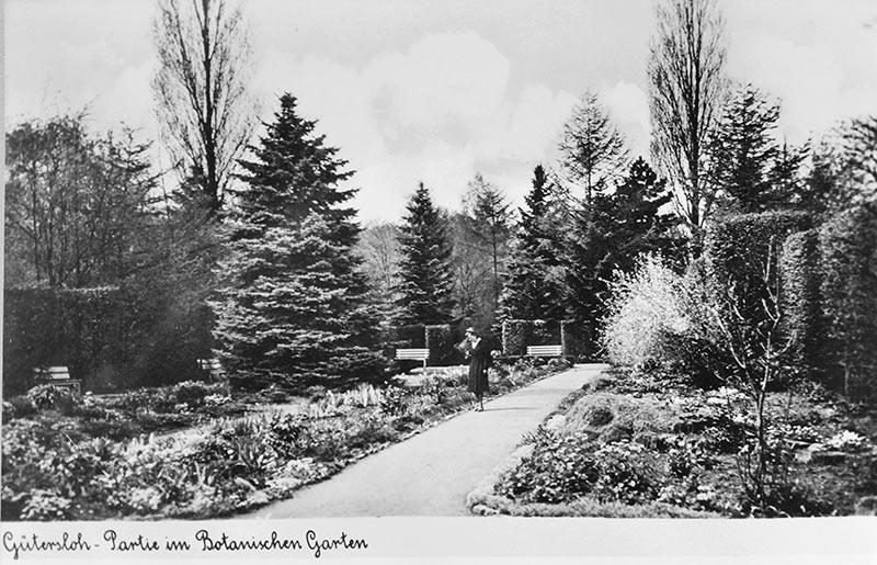 heckengarten stadtpark g tersloh botanischer garten g tersloh der f rderkreis. Black Bedroom Furniture Sets. Home Design Ideas