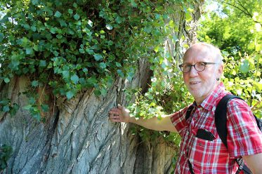 Gerald Kulbrock